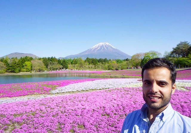مع جبل فوجي .. في فصل الرّبيع
